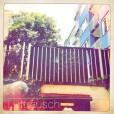 LFR-BA01-Selzergasse-Backyard-Noon-LightActivity